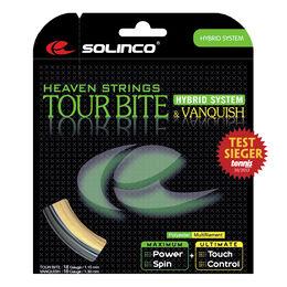 Tour Bite 6,8m silber + Vanquish 6,3m natur
